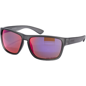 UVEX LGL 36 Colorivision Bril, grey/daily plasma